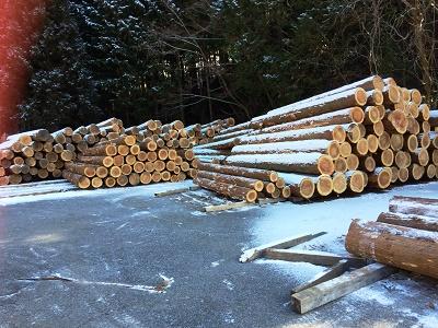 ハミングの製材所 設楽町 奥三河木材協同組合